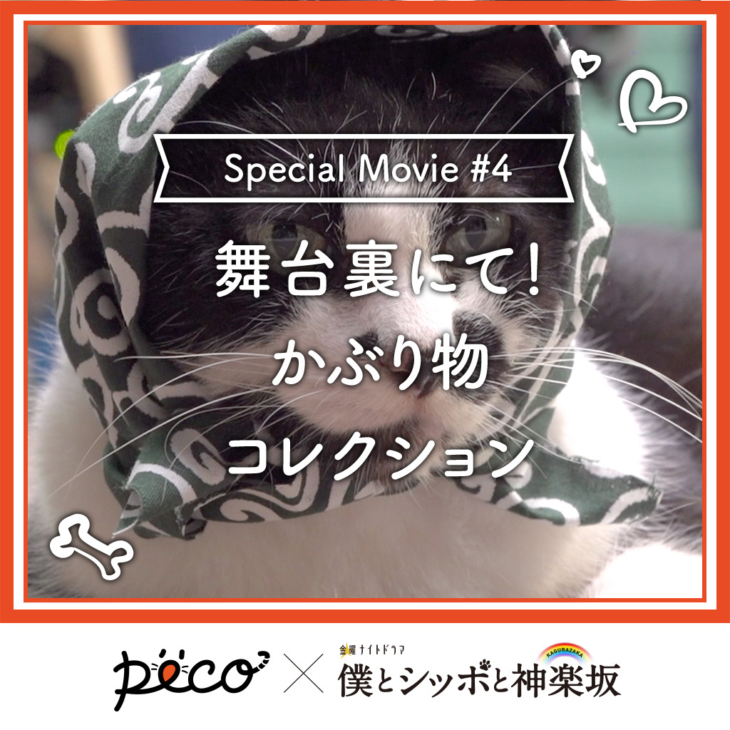【PECO僕坂 #4】舞台裏、かぶり物コレクション♪ Sponsored by テレビ朝日