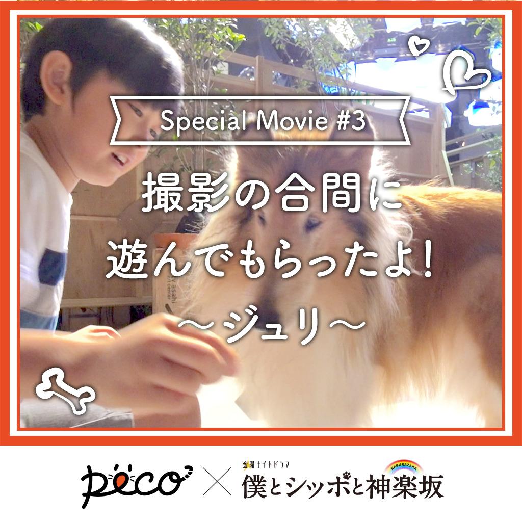 【PECO僕坂 #3】撮影の合間に遊んでもらったよ!〜ジュリ〜 Sponsored by テレビ朝日