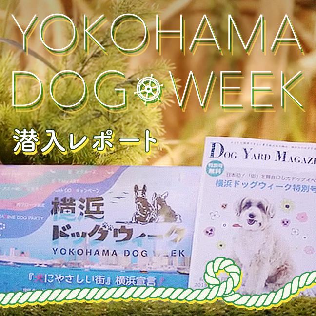 4/22(日)まで開催中の『横浜ドッグウィーク』に潜入しました♪