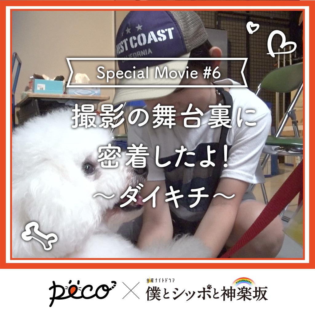 【PECO僕坂 #6】撮影の舞台裏に密着!〜ダイキチ〜 Sponsored by テレビ朝日