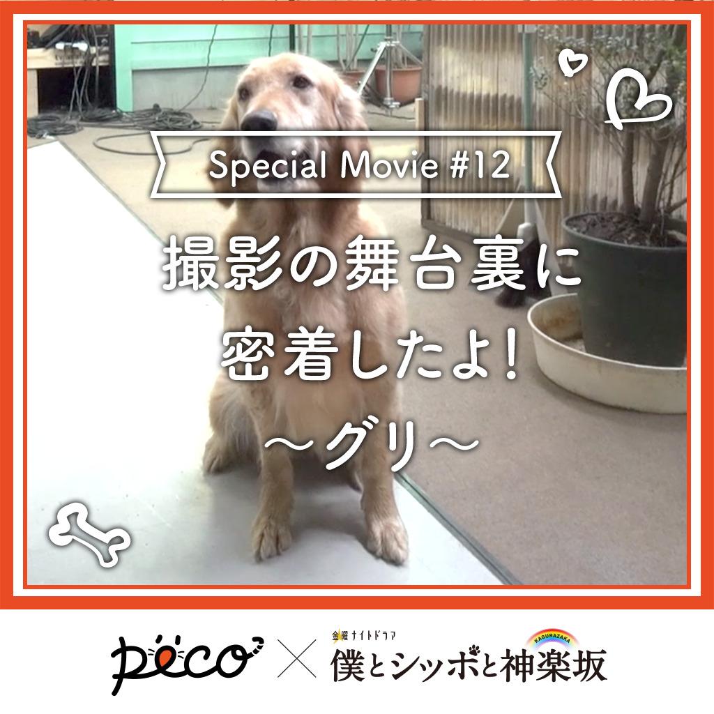 【PECO僕坂 #12】撮影の舞台裏に密着!〜グリ〜 Sponsored by テレビ朝日