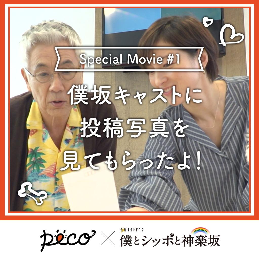 【PECO僕坂 #1】投稿写真を出演者さんに見てもらったよ💓 Sponsored by テレビ朝日