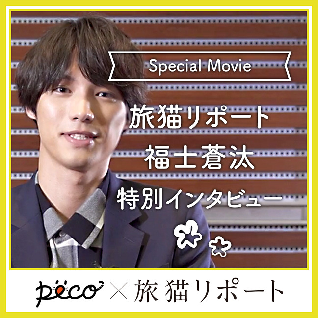 『旅猫リポート』福士蒼汰さん特別インタビュー[Sponsored by 松竹]
