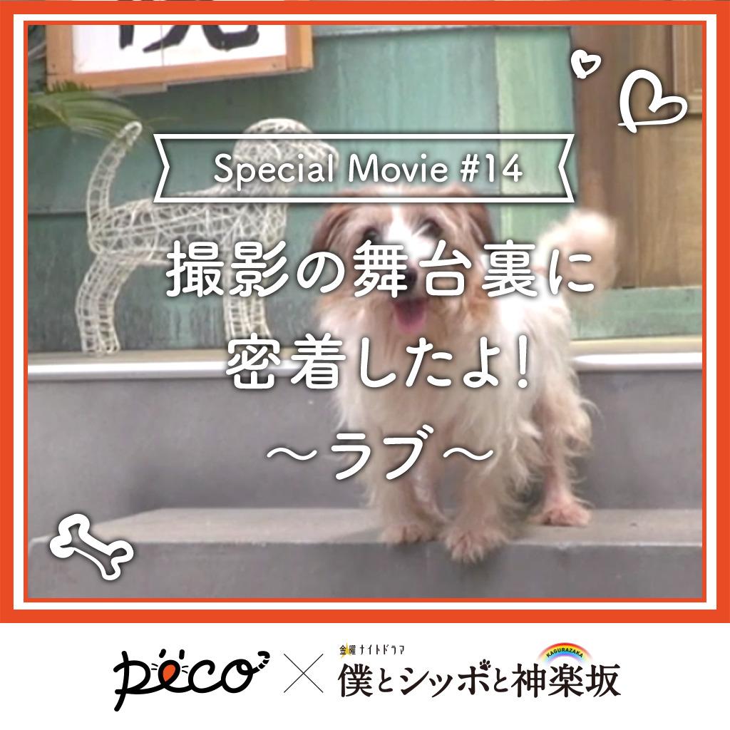 【PECO僕坂 #14】撮影の舞台裏に密着!〜ラブ〜 Sponsored by テレビ朝日